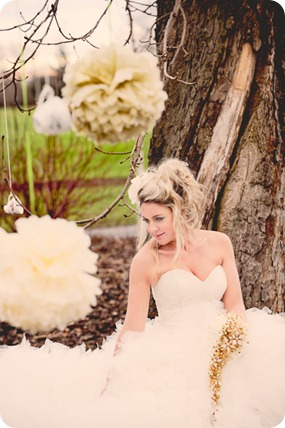 Sue Westwood- Ruttledge Photography