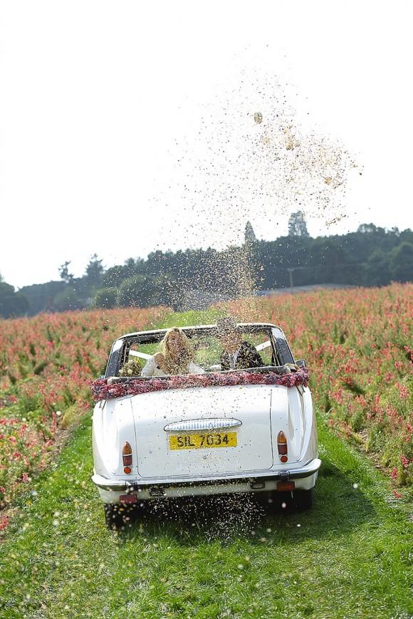 ShropshirePetals.com Confetti explosion - confetti from £11.50 per litre (6)