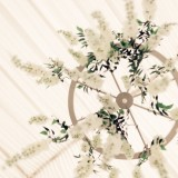 A Stunning Outdoor Wedding at Natural Retreats (c) Paul Liddement Wedding Stories (42)