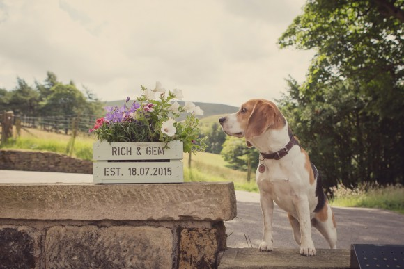 A Colourful Wedding In The Peak District (c) Lissa Alexandra Photography (3)