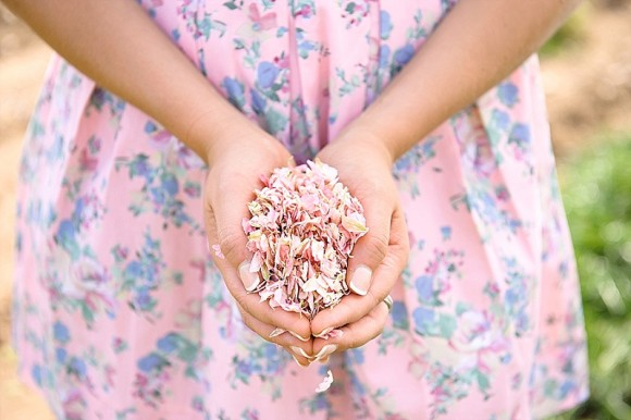 its the season: spring 2016 confetti colour trends from shropshire petals