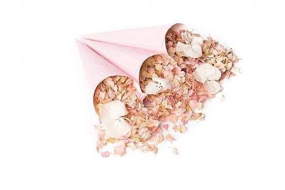 ShropshirePetals.com Pink confetti cones with Pink Lemonade and Daisy Daisy £13.95 per litre