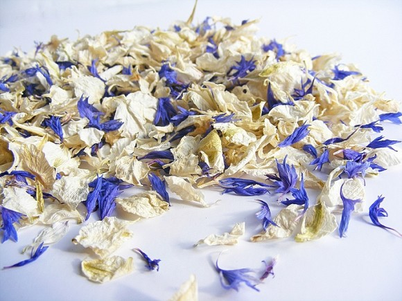 ShropshirePetals.com Something Blue £11.95 per litre (4)