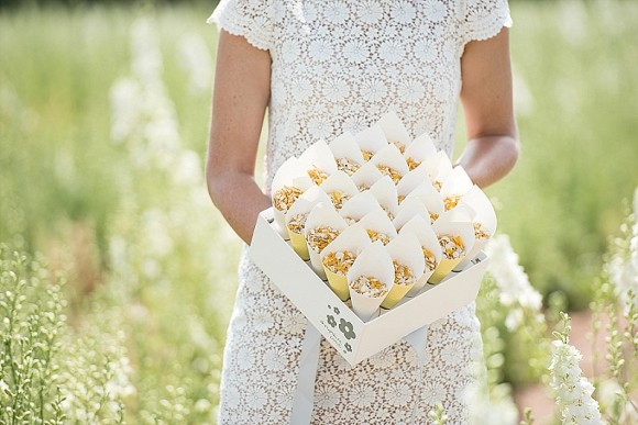 shropshirepetals-com-shropshire-box-with-yellow-and-white-cones-and-sunshine-kisses-45-3