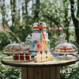 fiesta-wedding-in-the-woods-c-fox-owl-54