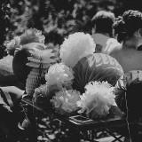 fiesta-wedding-in-the-woods-c-fox-owl-6