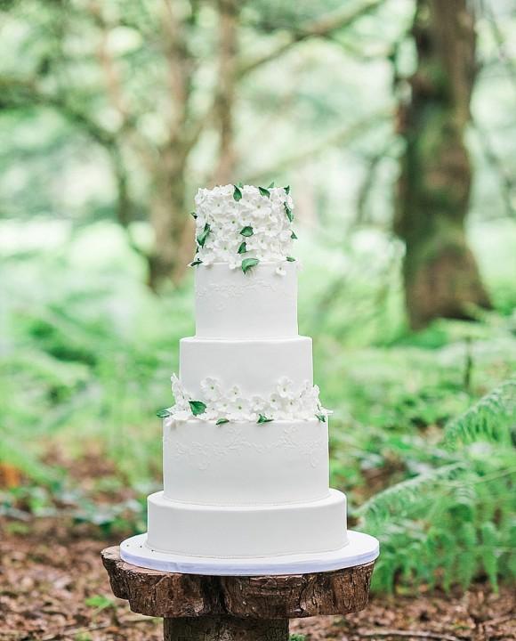 Booootiful Cakes (1)