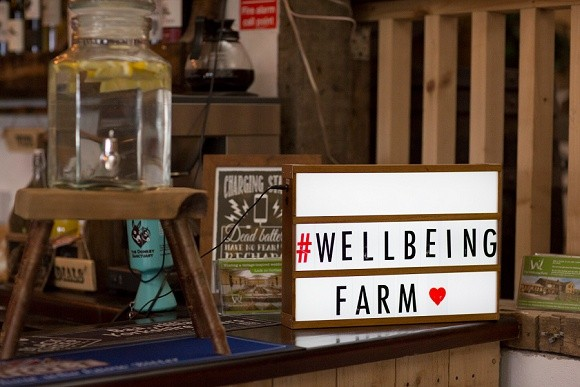 A Colourful Wedding at The Wellbeing Farm (c) Rustic Lovebirds (1)