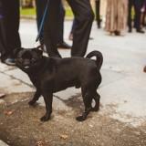 An Autumn Wedding at East Riddlesden Hall (c) Photography 34 (21)