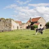 A Romantic Wedding at Danby Castle (c) Paul Hawkett Photography (35)