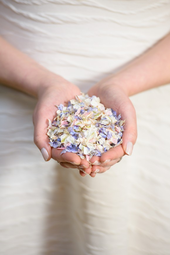 colour burst: shropshire petals' spring confetti trends
