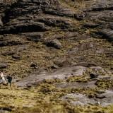 An Isle Of Skye Elopement Wedding - John Barwood Photography (53)