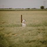 A Woodland Engagement Shoot (c) Clique Visuals (40)